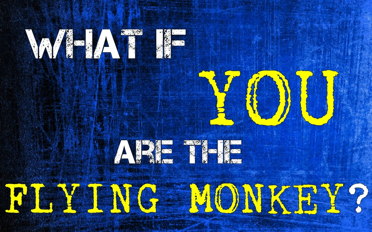 What if You Were a Flying Monkey?