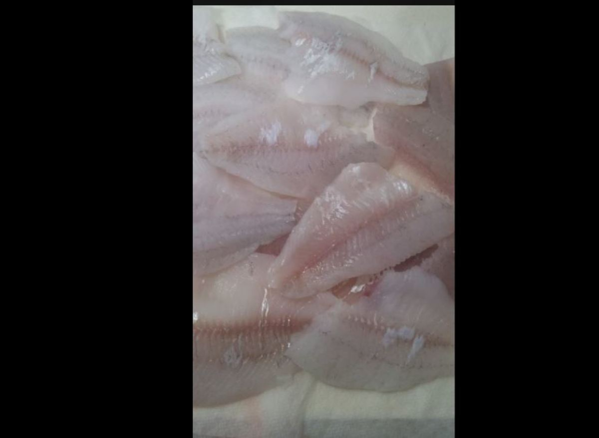 Minnesota Musing: Fish Fillets - It Looks Pretty Easy