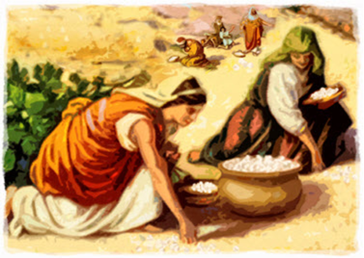 why-the-manna-ceased-when-the-israelites-entered-the-promised-land