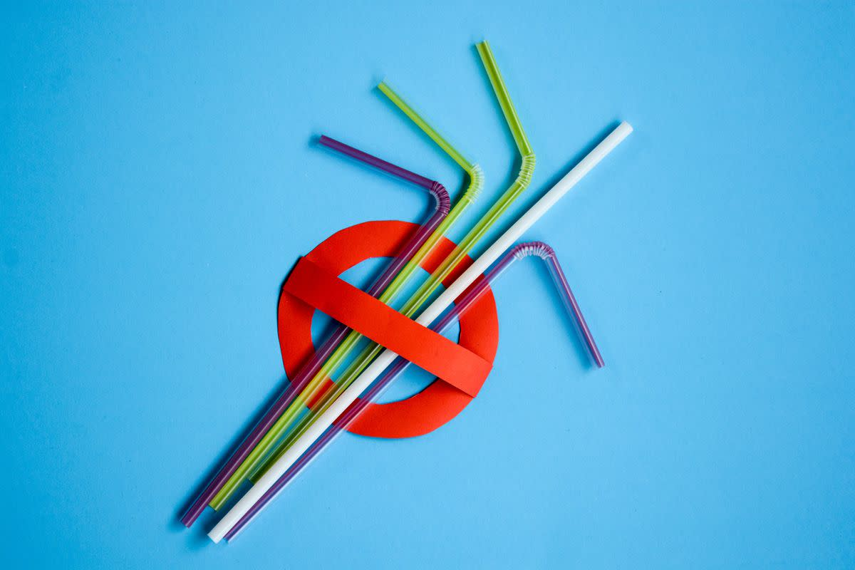 No More Plastic Straws: What Are the Alternatives?