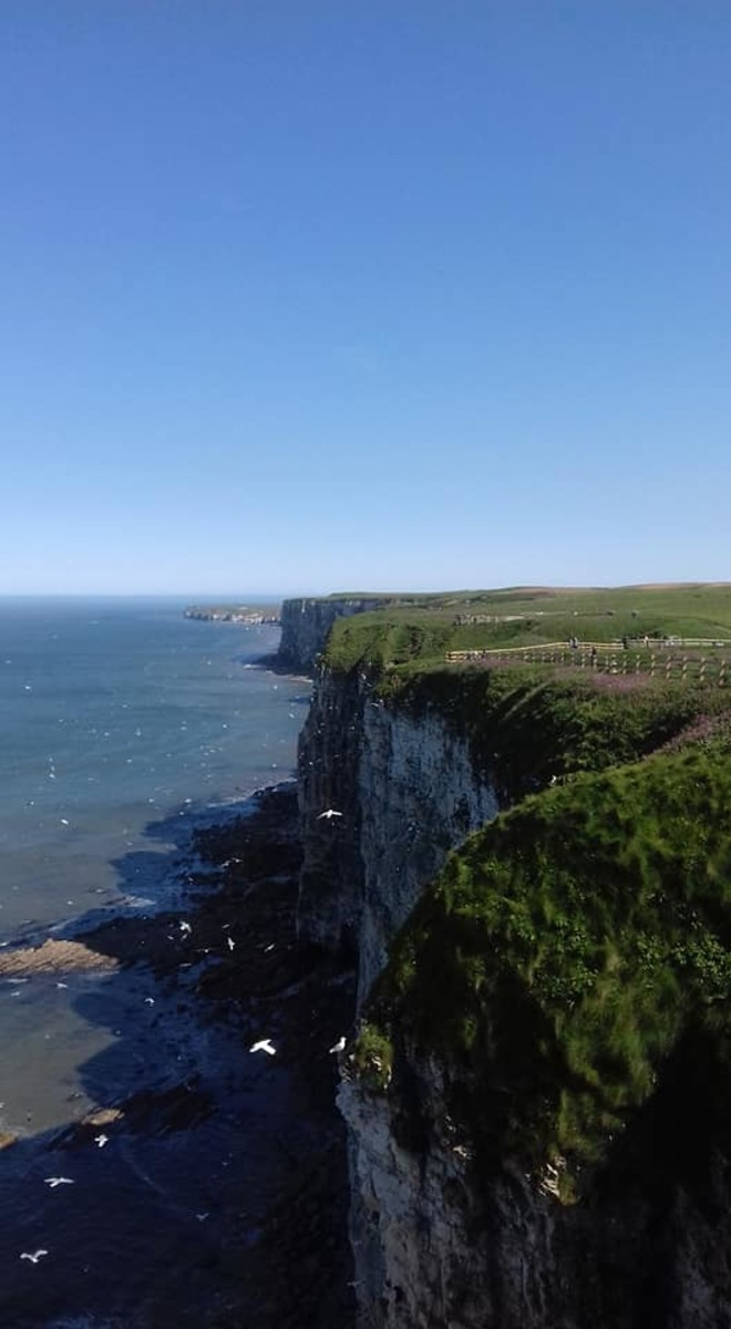 A picture taken of the cliffs looking towards Flamborough Head by yours truly back in May 2018.
