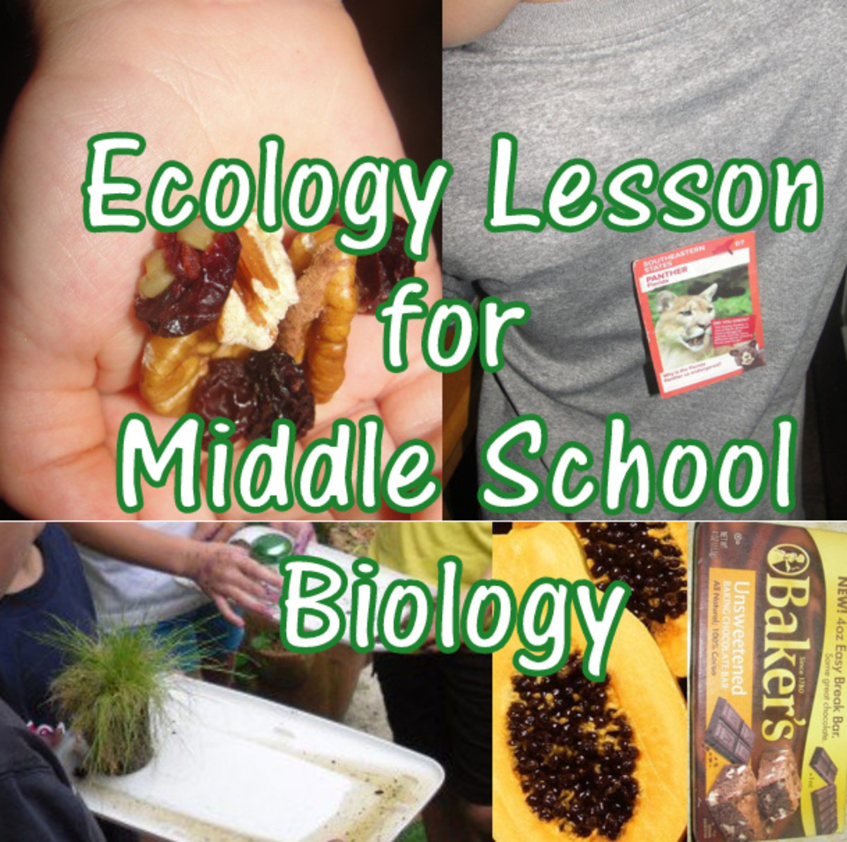 Ecology Lesson for Middle School Biology