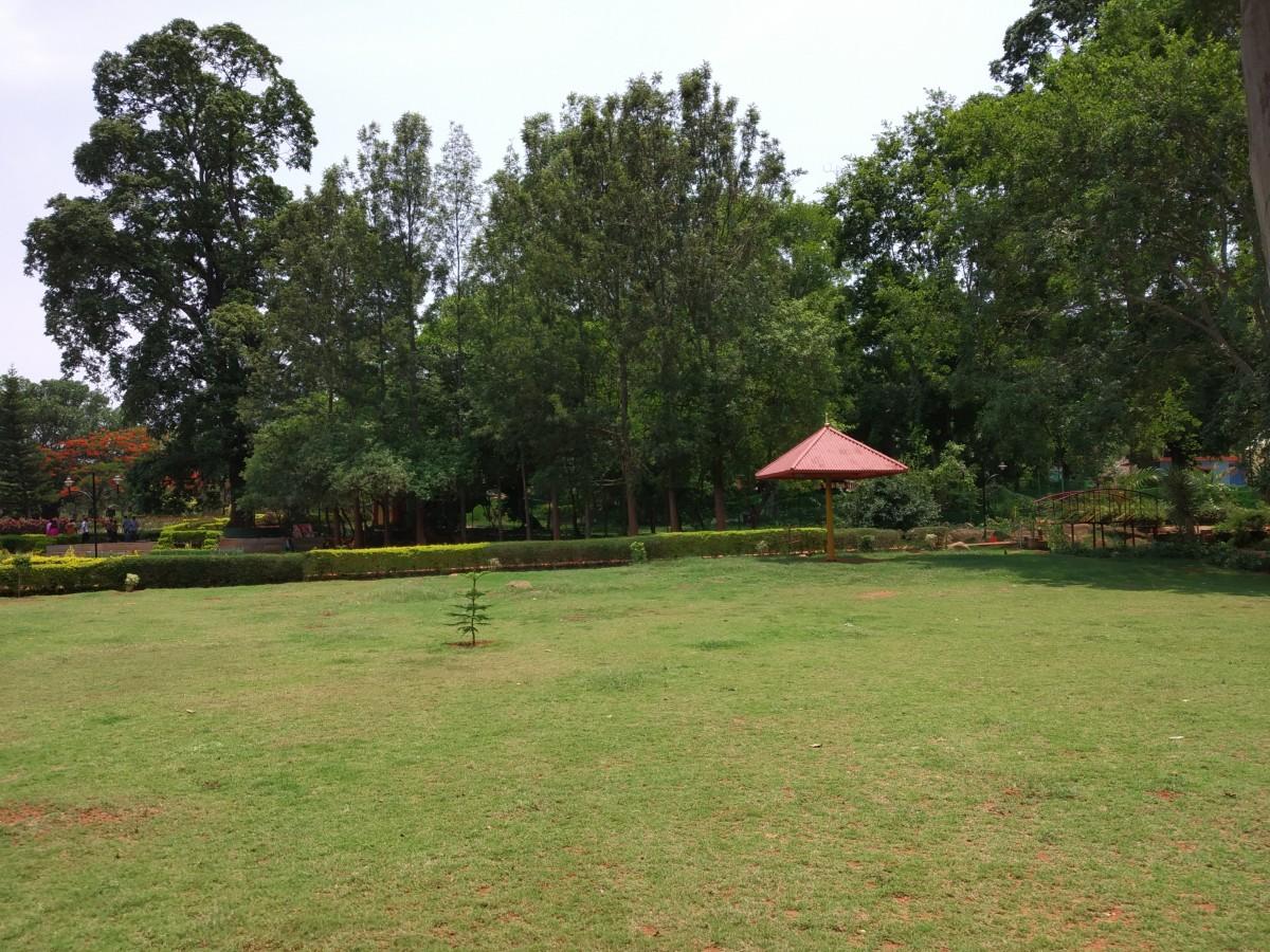 Nature Park, Yelagiri