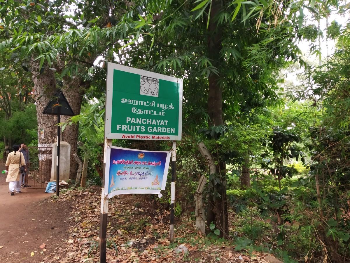 Panchayat Fruits Garden, Yelagiri