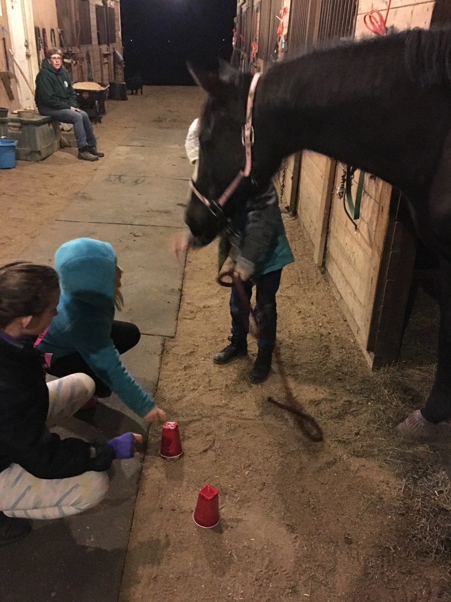 Take advantage of unmounted lessons, camps, clinics and other opportunities for your child to learn what else is involved in the horses besides just riding them.