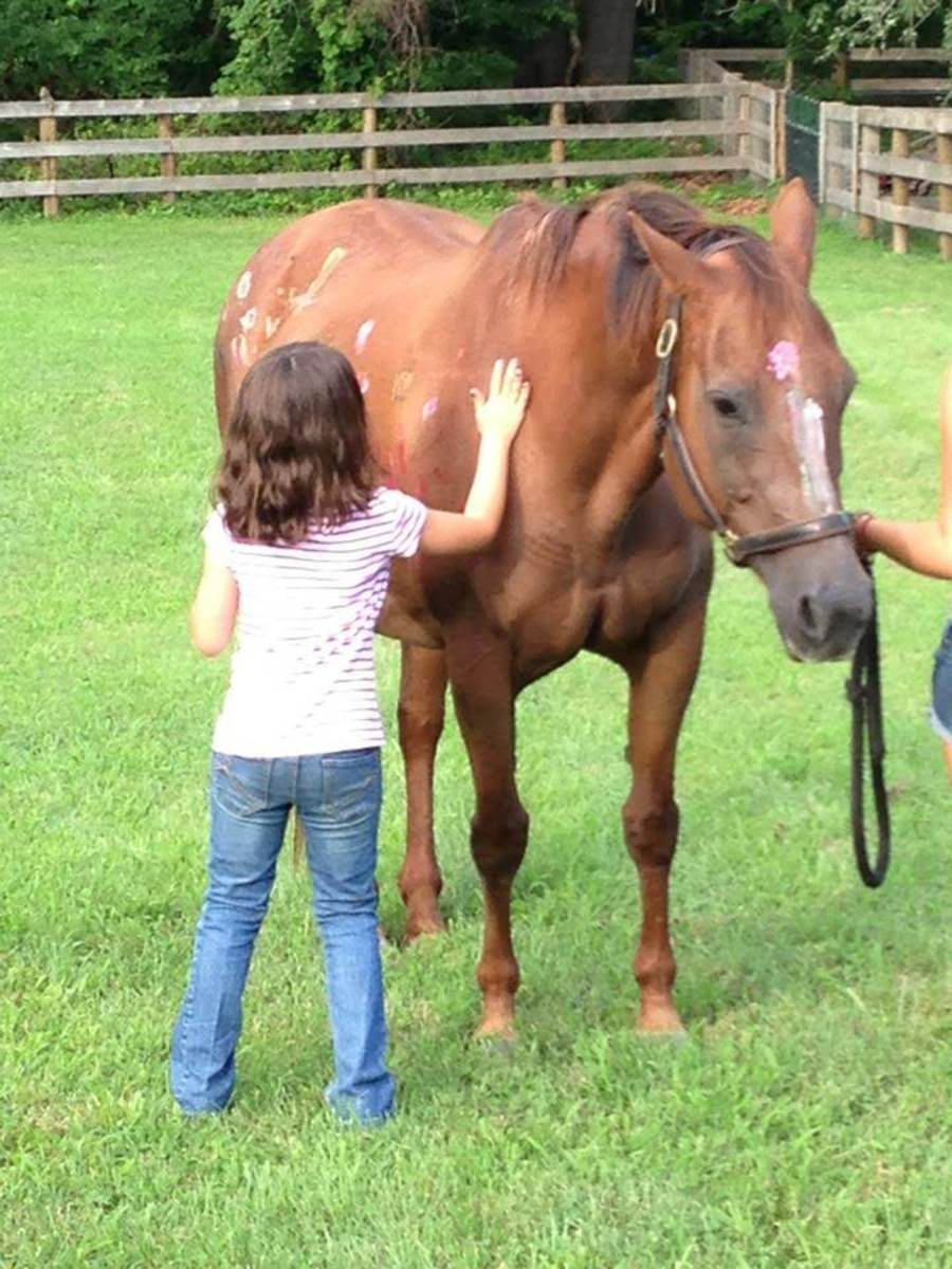 All the kids have their favorites, but they will learn to ride and handle a wide variety of horses.