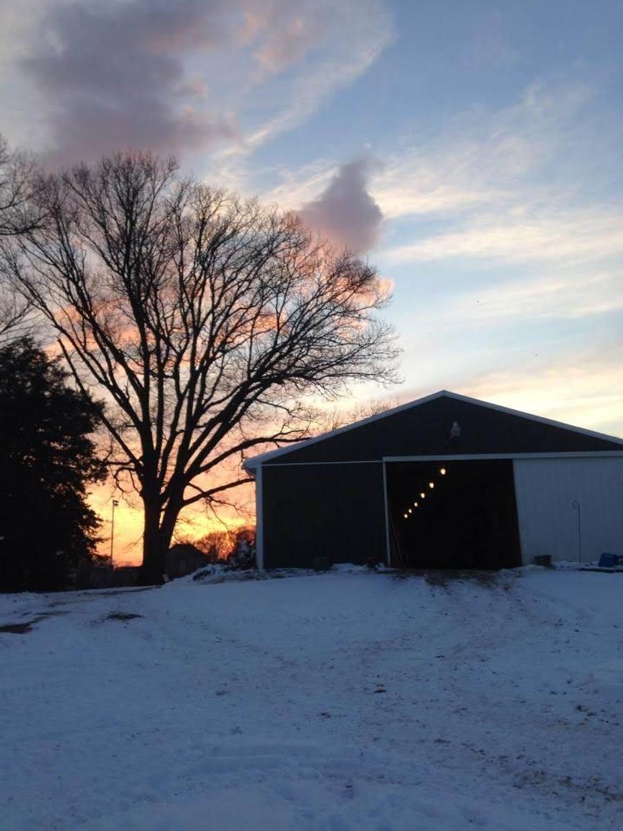 Hopefully you can find a warm, and friendly beginner barn. One like mine!