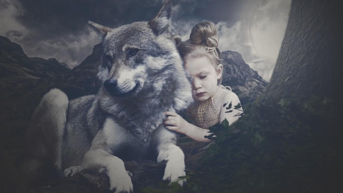 She - Wolf