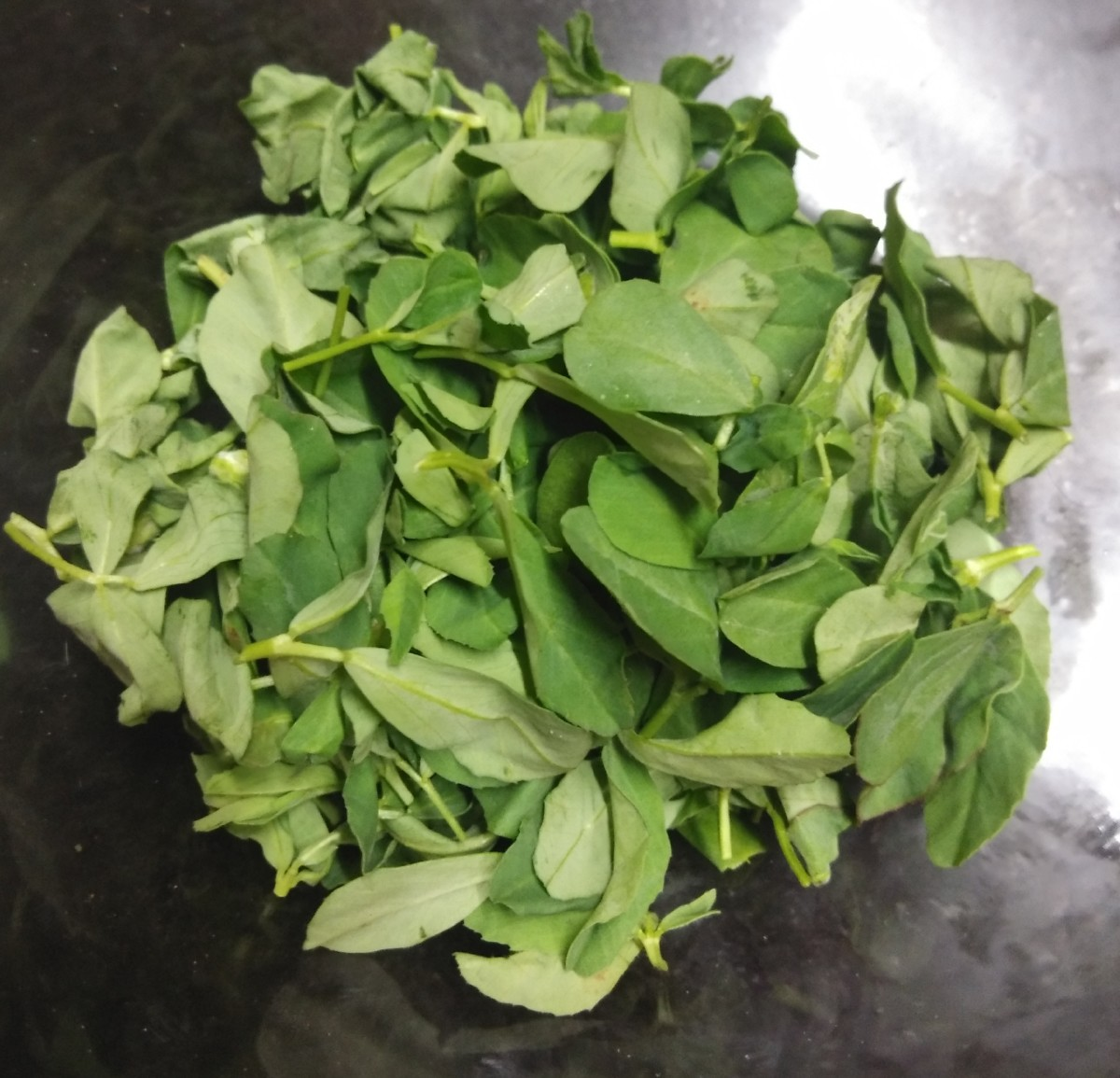 Pluck fresh fenugreek leaves from stems.