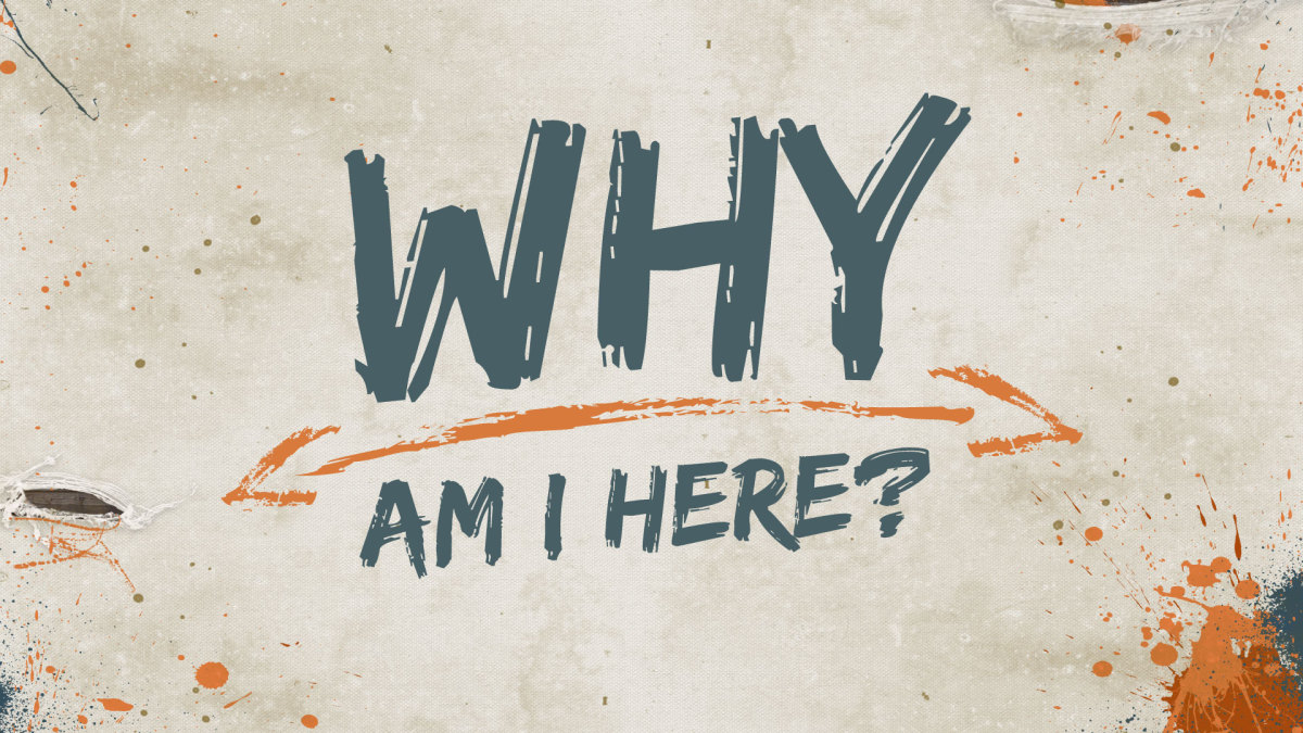 What is Your Why: Discover Your Purpose in Every Day Life
