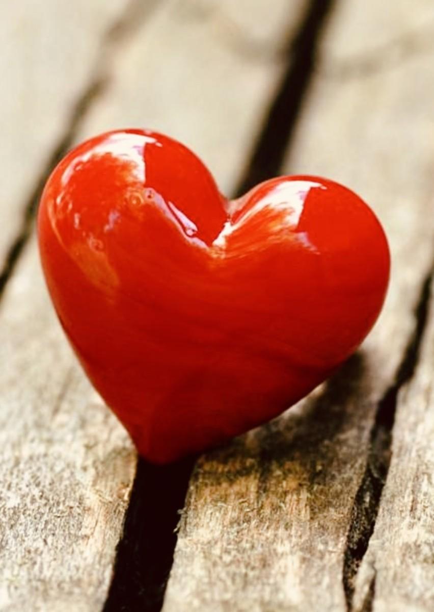 The Treasure of an Understanding Heart