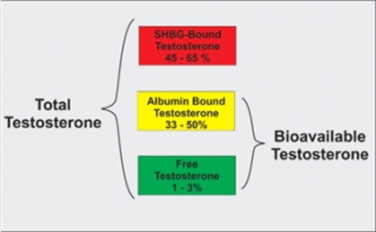 testosterone-for-men-and-women-the-secrets-to-optimizing-your-hormone-balance