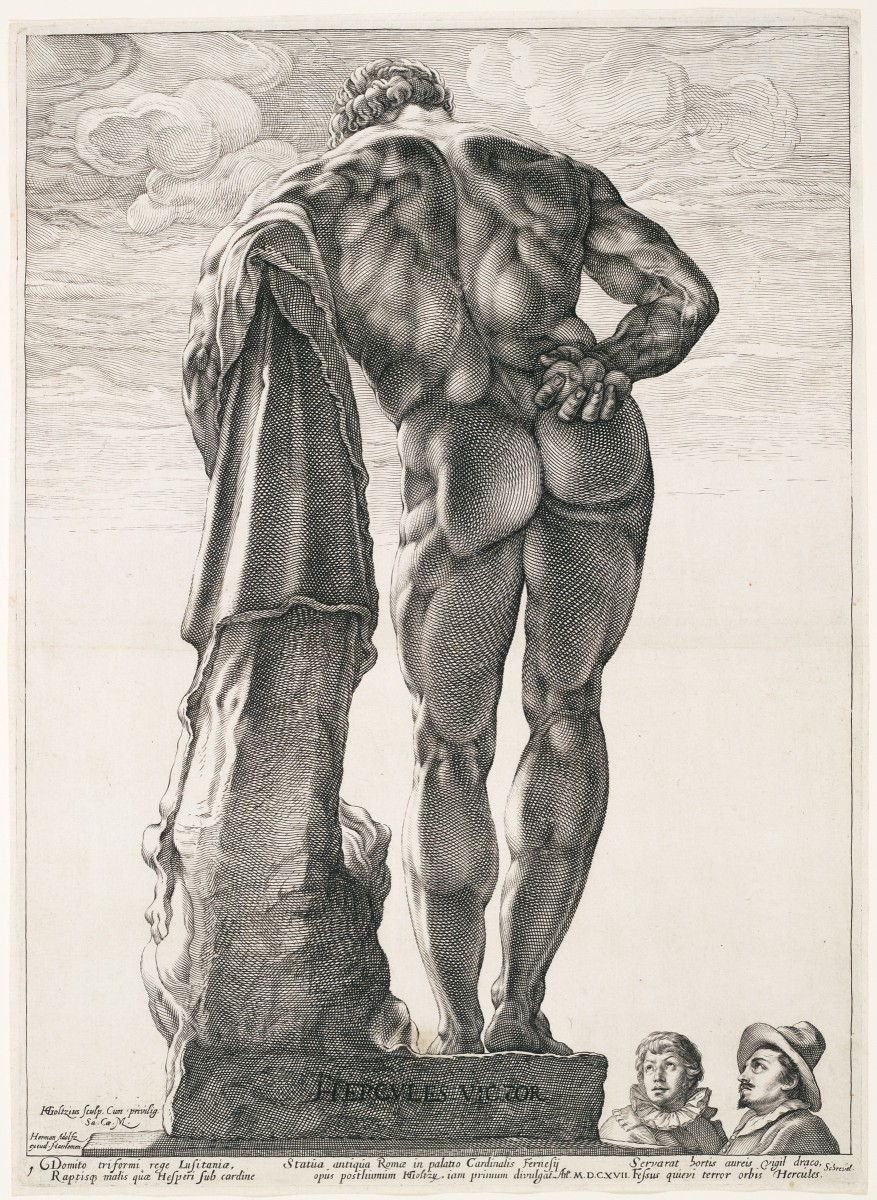 The large muscles of the gluteals and hamstrings can be compared here to the smaller muscles of the upper limbs, in this drawing portraying Hercules