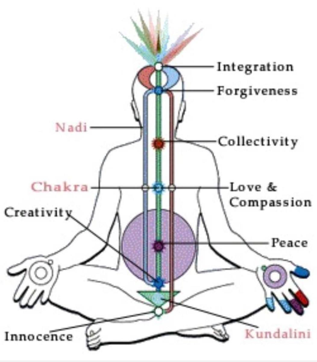 Kundalini is a psychophysiological event