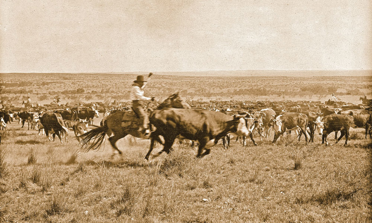 Cowboys, Cattle Drives, and Chuck Wagons