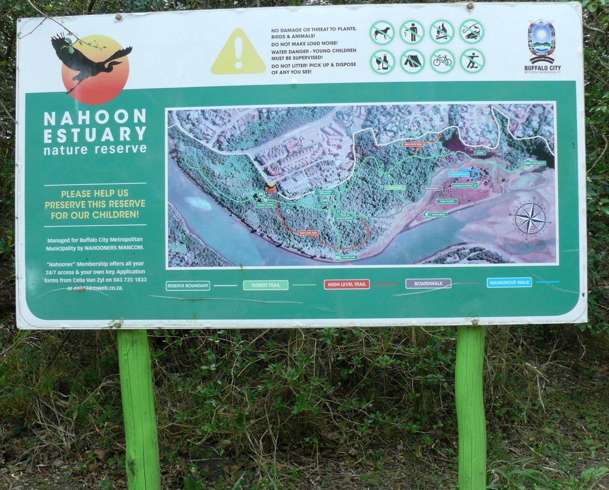 An Hour at the Bird Hide -Nahoon Nature Reserve