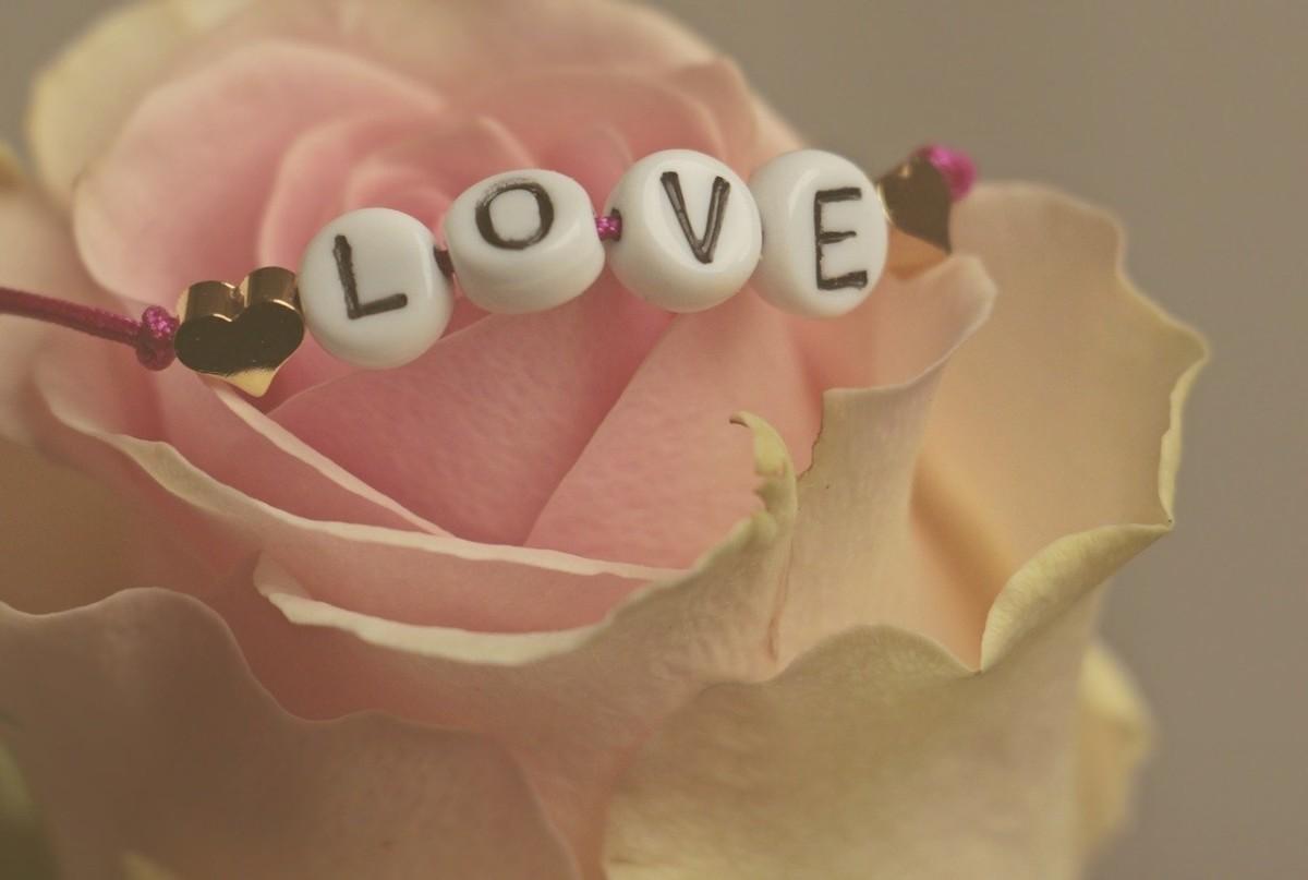 Rose, Love, Mandala