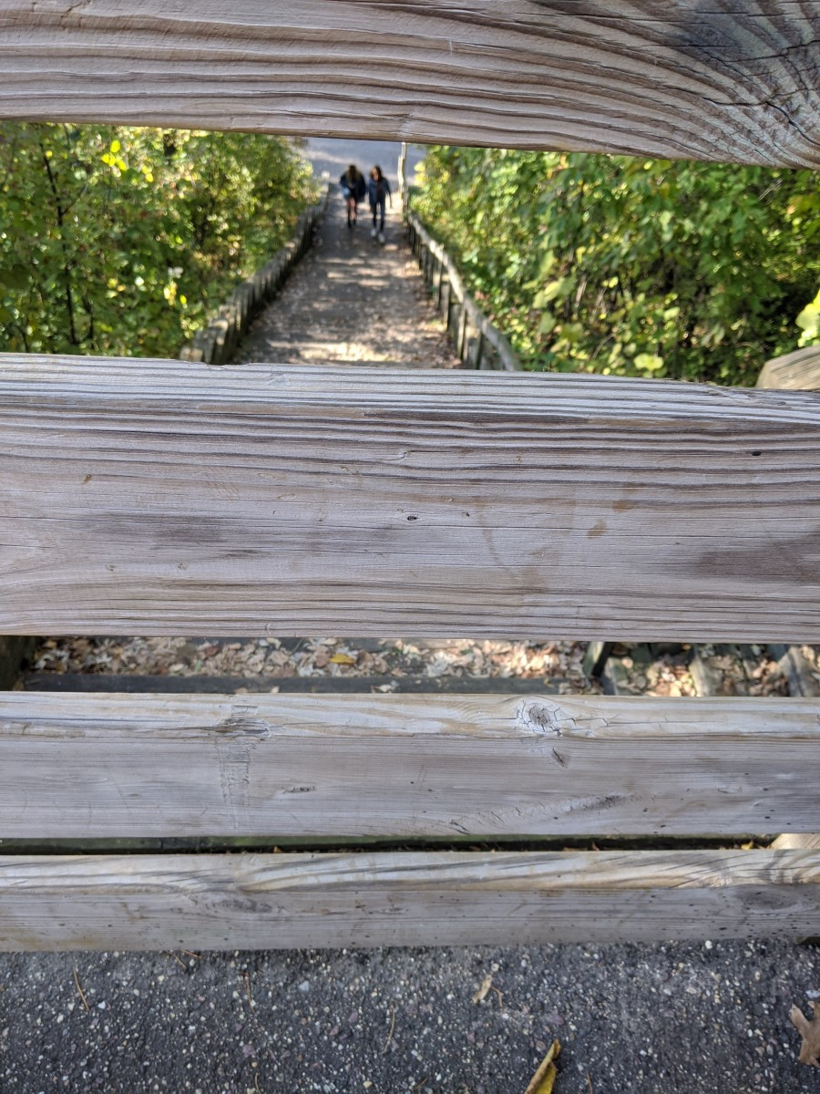 Stairway to access trail