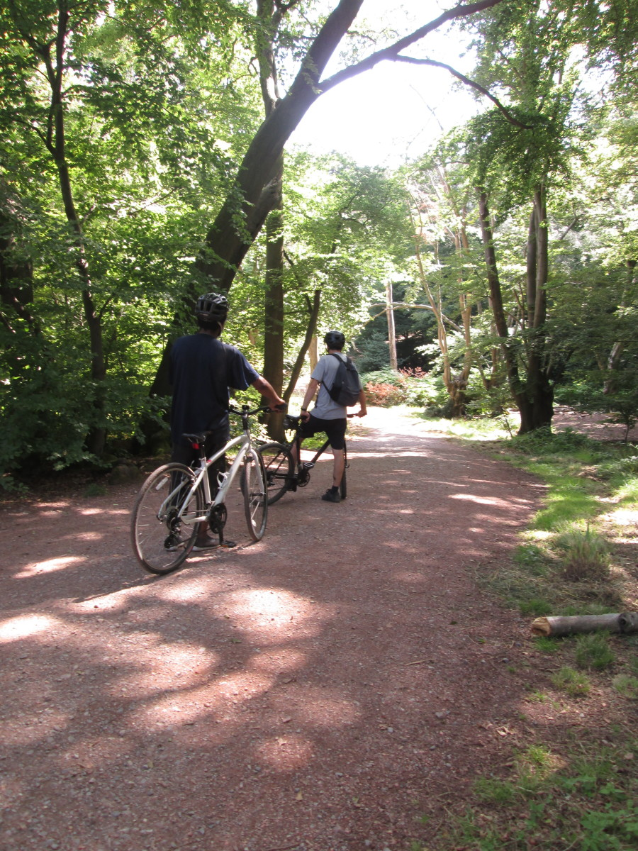 A pair of cyclists came to the crest of another rise on the path...