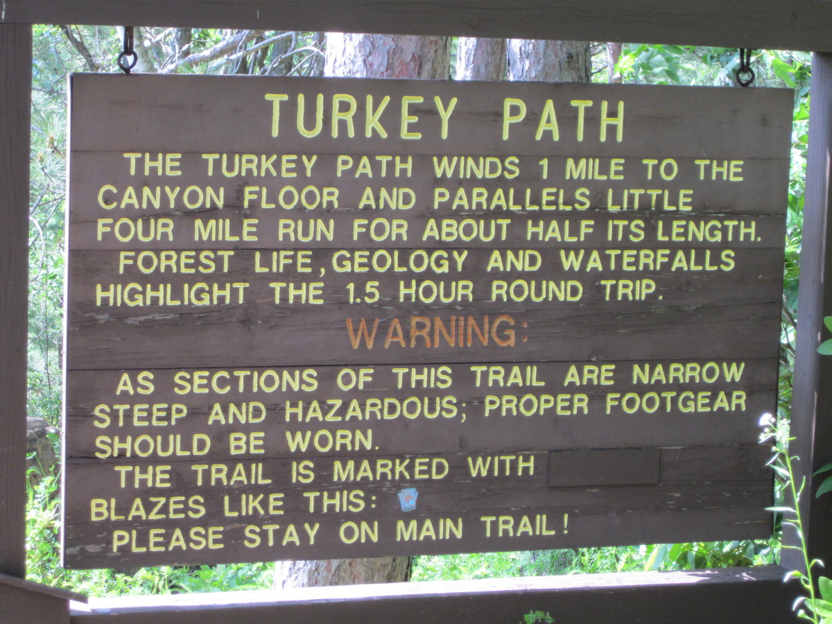 Turkey Path Trail Sign
