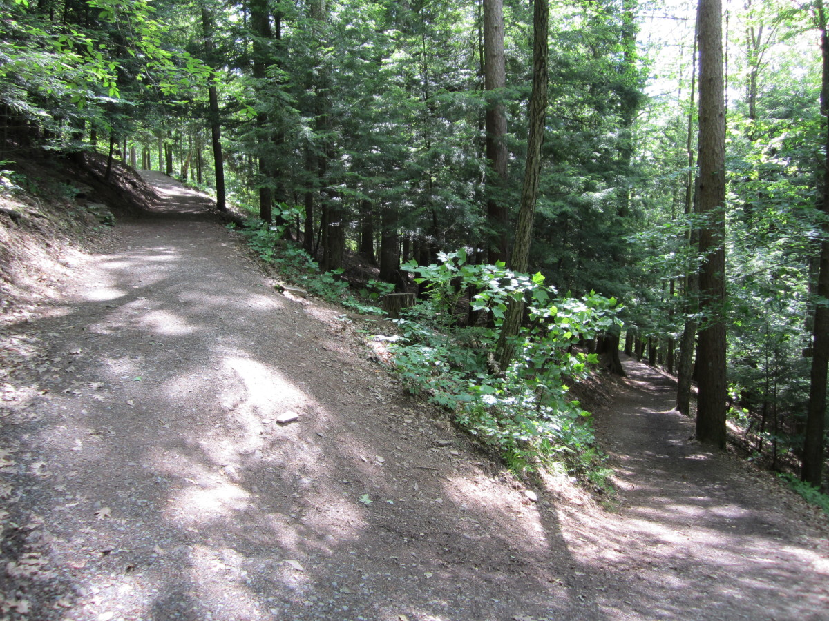 The flat portion gives way to a series of switchbacks on the upper trail.