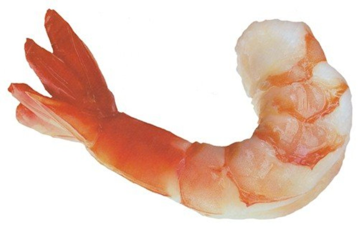 10 How To Tips for Selecting Shrimp at the Grocery Store