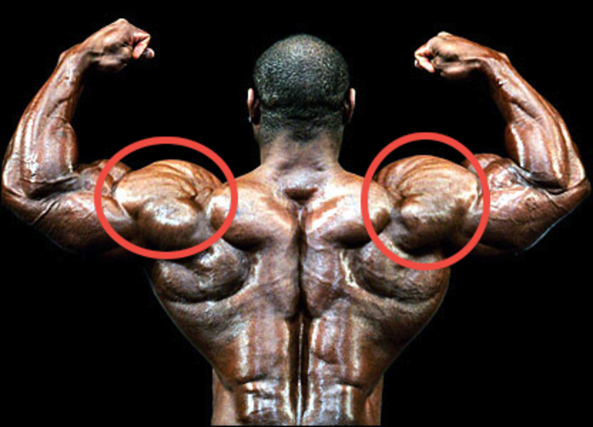 How to Build Big Thick Shoulder Muscles