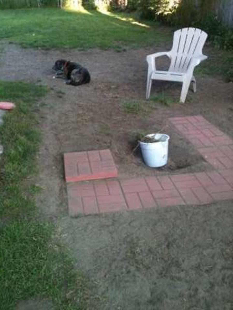 My first row of pavers placed, so I could shape  the center fire pit area.