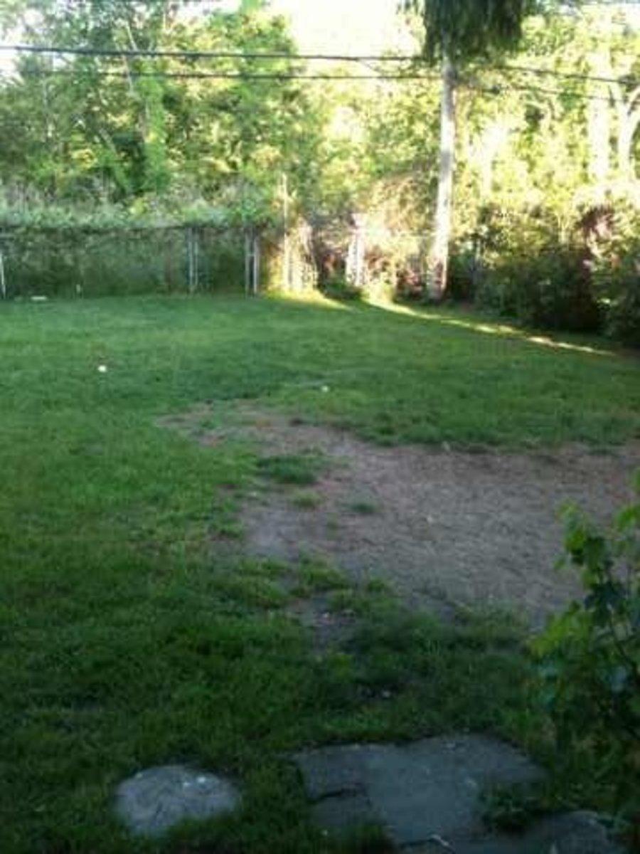 Just a fraction of my backyard sandbox