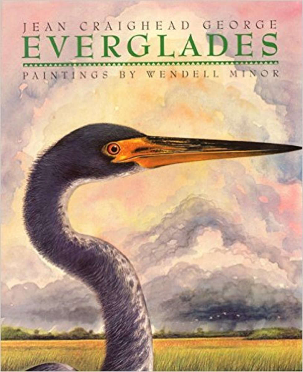 Everglades by Jean Craighead George - Image is from amazon.com