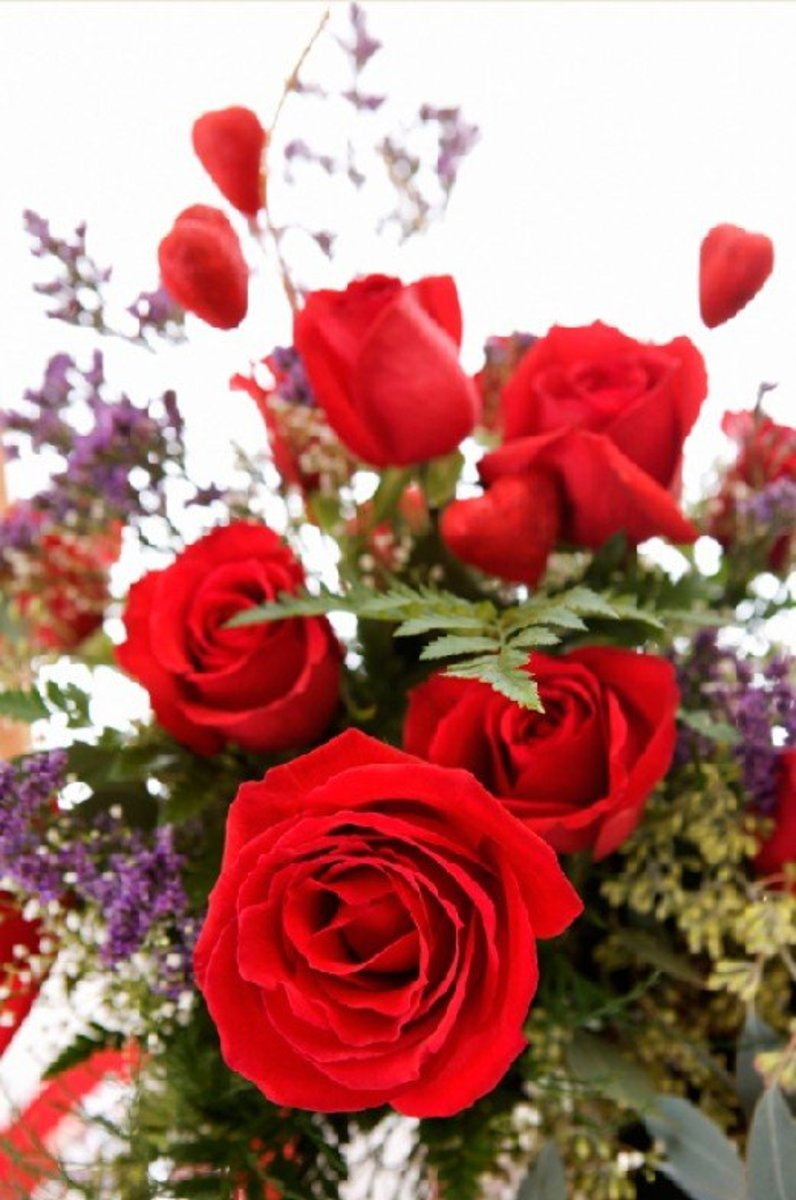 Red Roses in Floral Bouquet