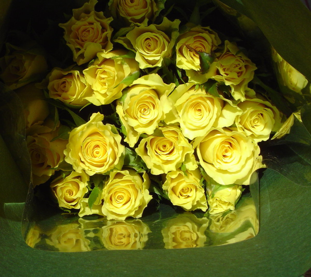Large Yellow Roses Bouquet Photo