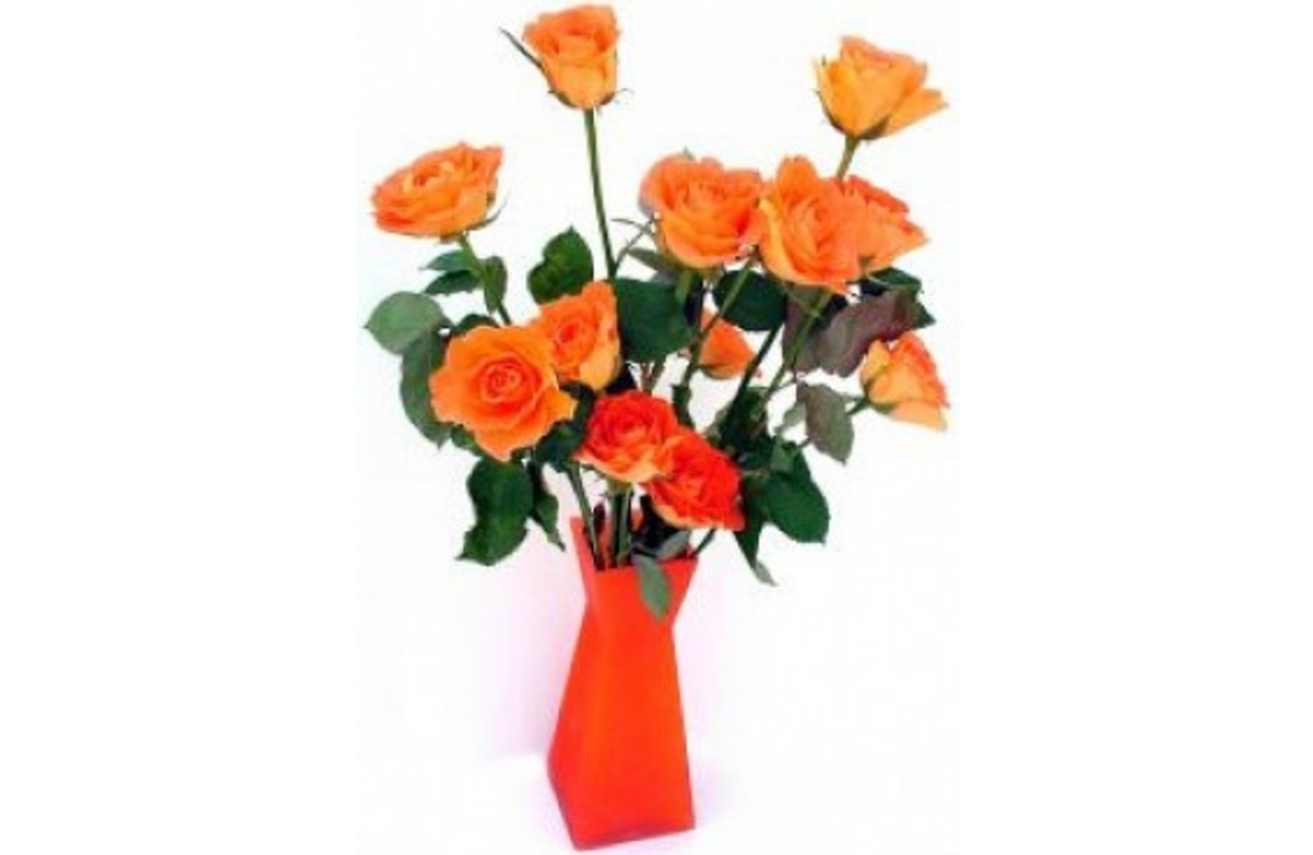 Orange Vase with Orange Roses Picture