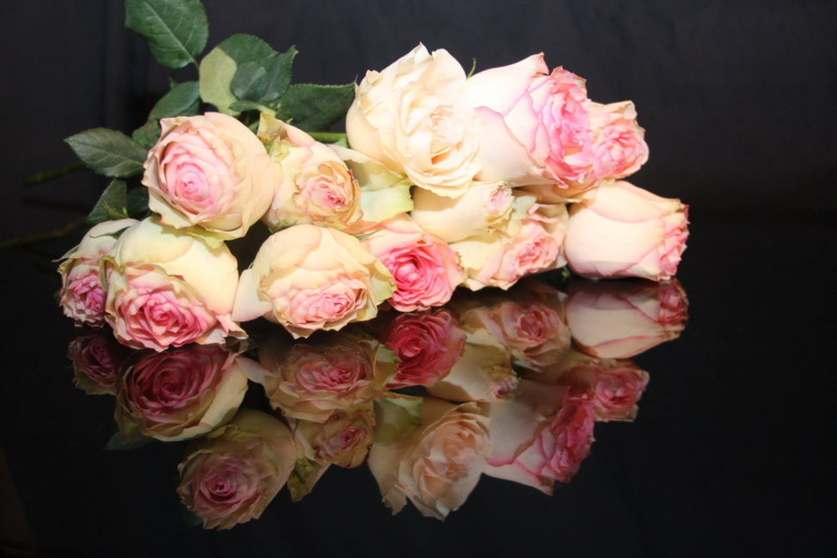 Soft Pink with White Roses Pic