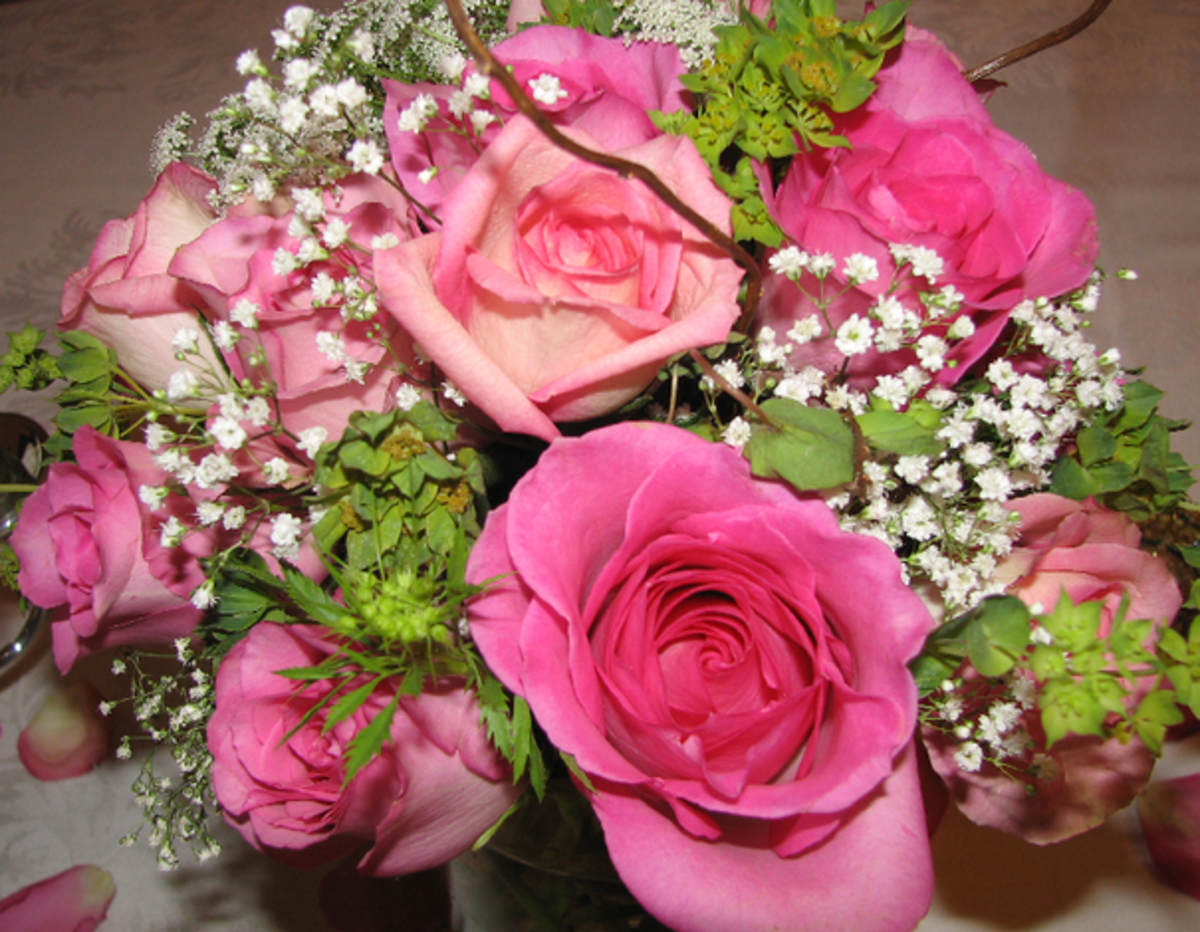 Pink Roses with Baby's Breath Bouquet Picture