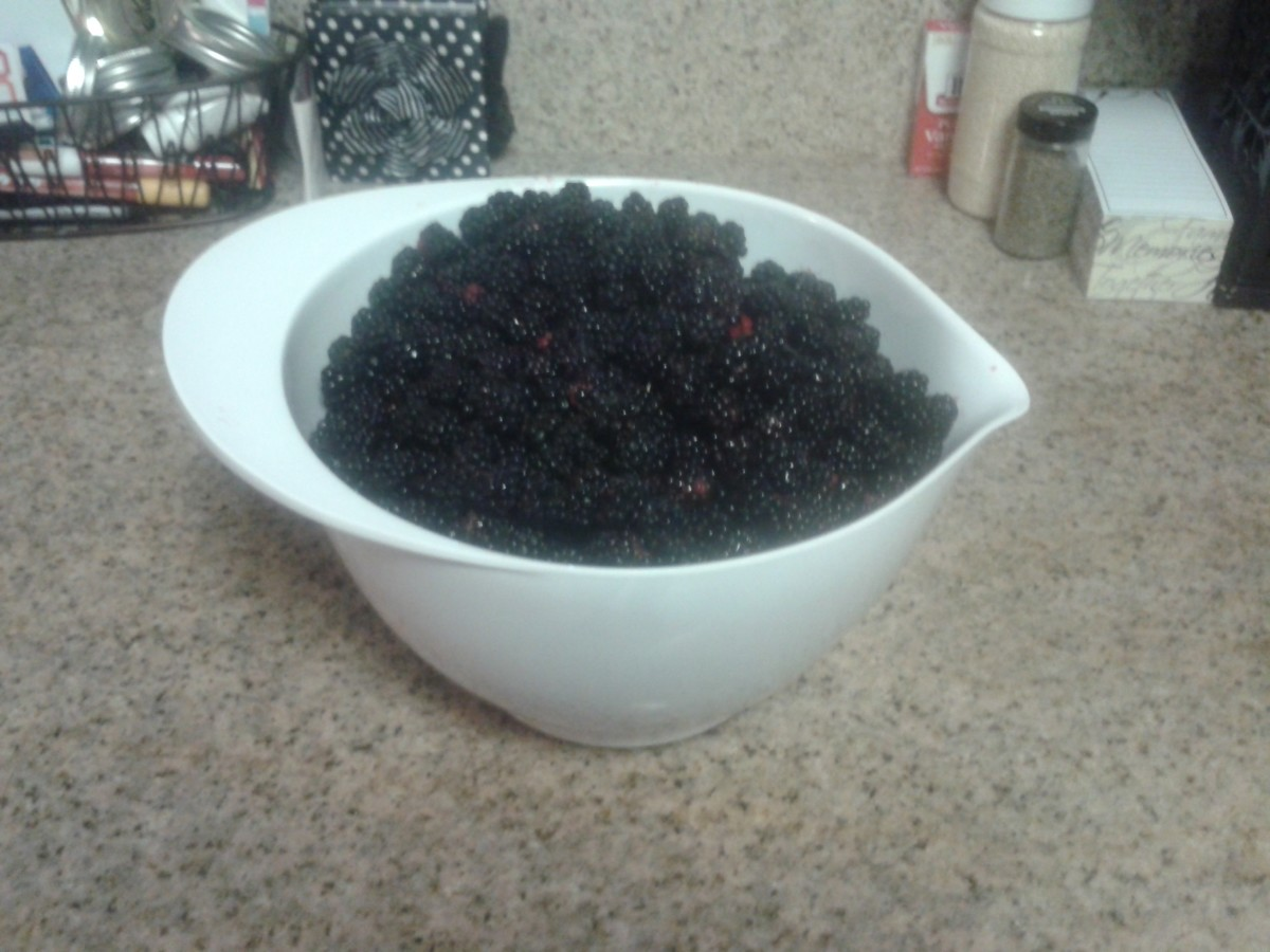 6 pounds of freshly picked blackberries. I have the scratches to prove it! I heard they now sell thorn-less blackberry bushes... sign me up!