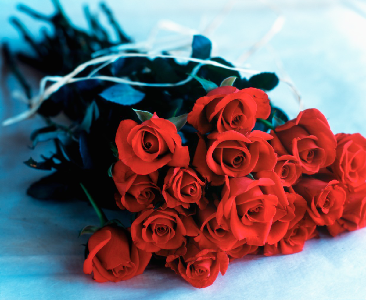 Red Roses Bouquet Image
