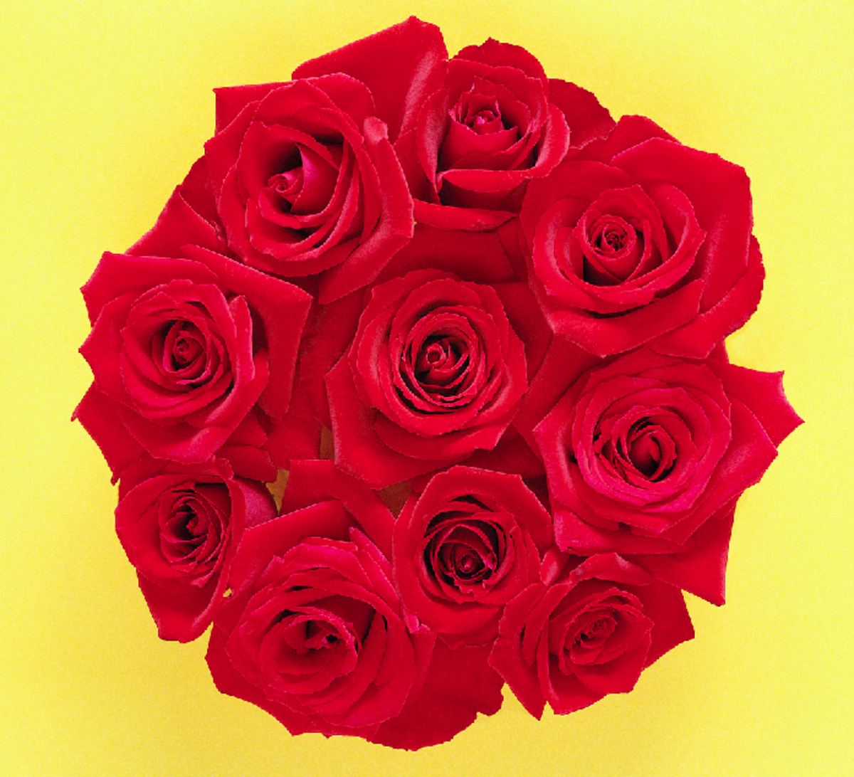 A Circle of Red Roses Bouquet Image