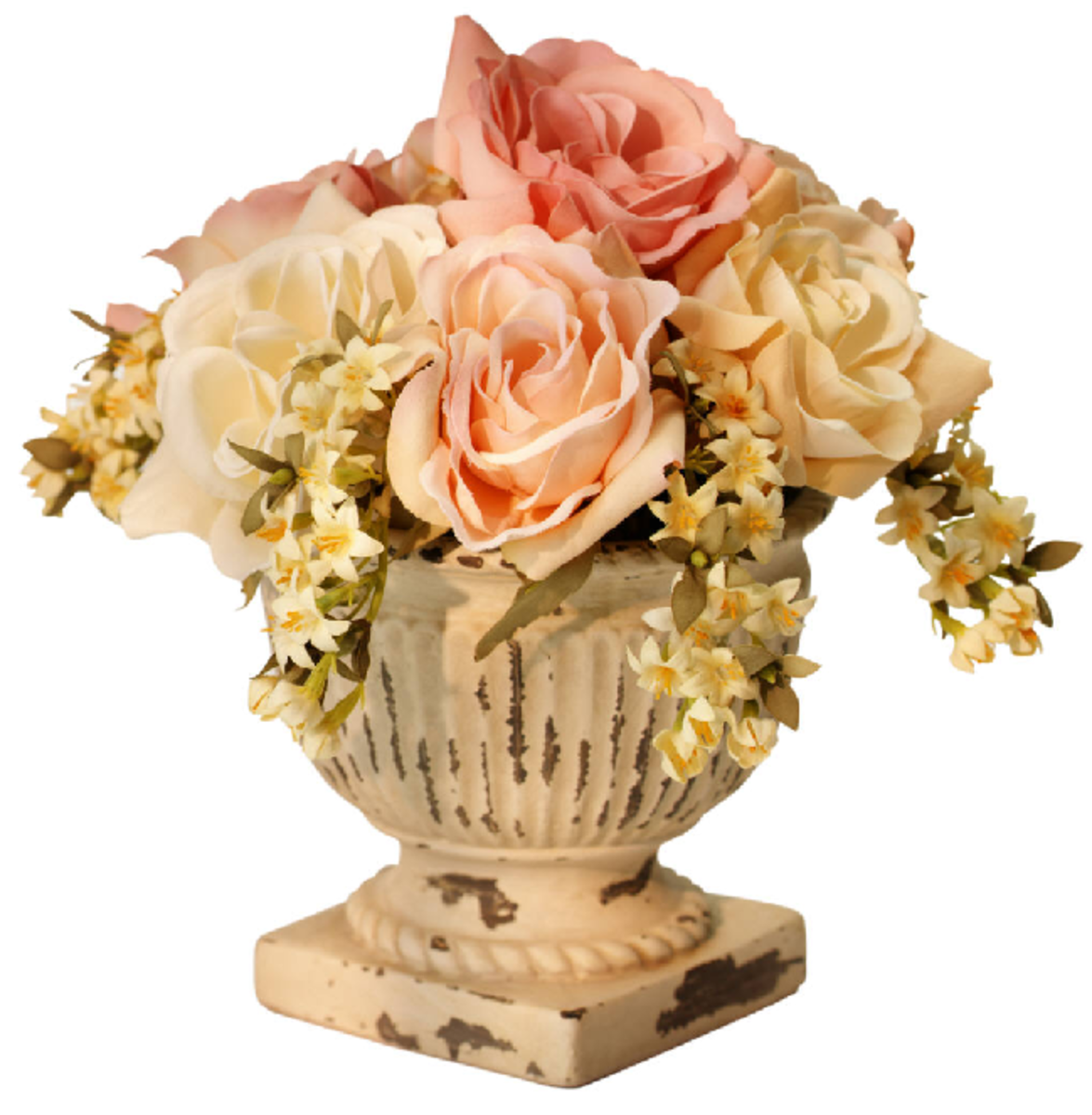 White and Peach Orange Roses Picture