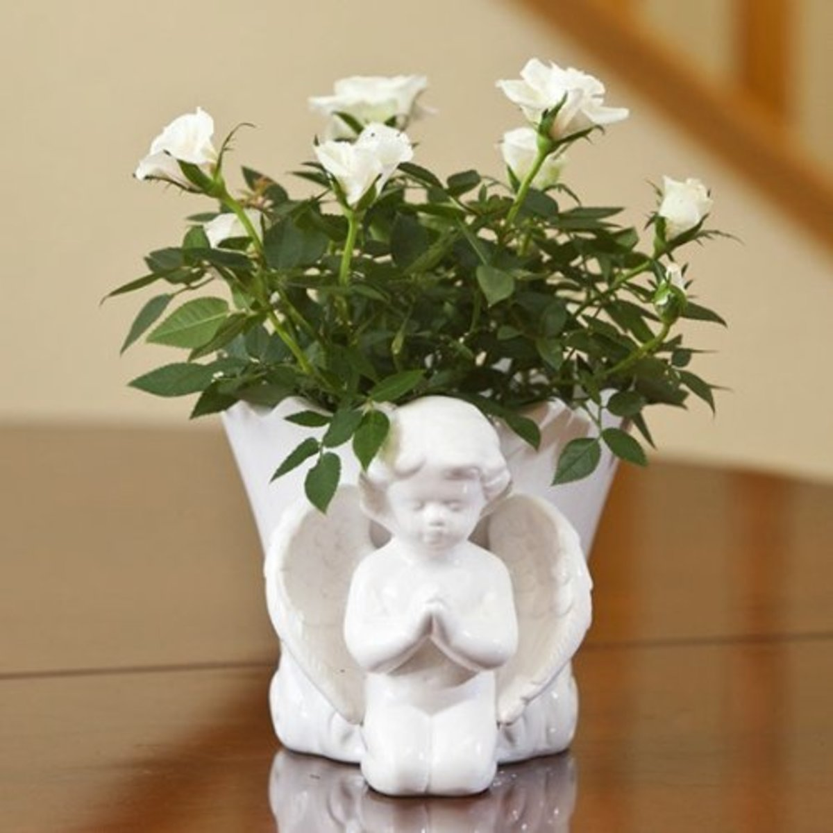 White Roses with Spiritual Message Image