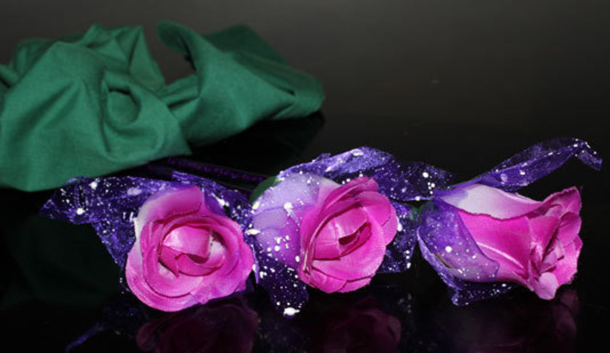 Three Purple Roses Picture