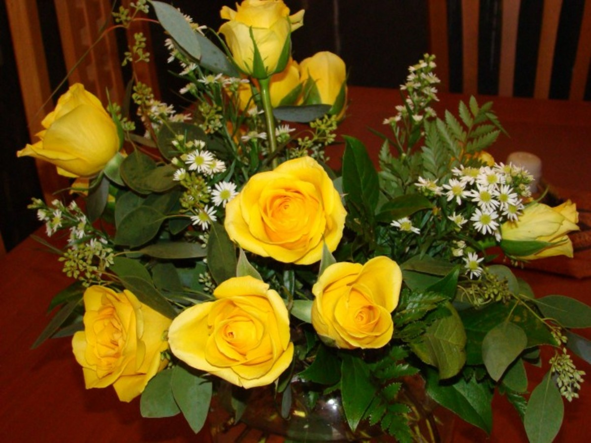 Yellow Roses Bouquet Pic