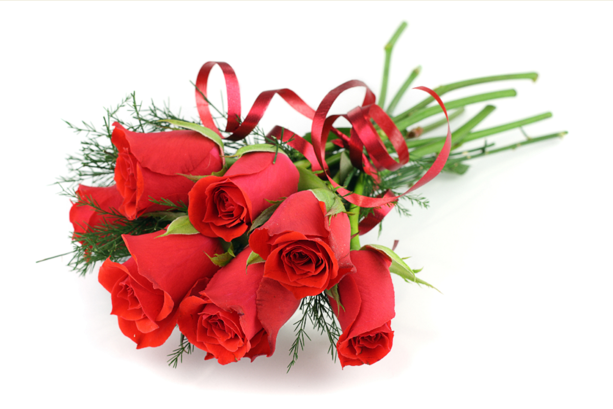 Red Roses Tied with Red Ribbon Bouquet
