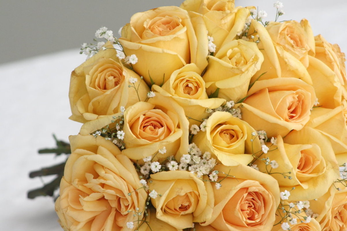 Yellow Roses Bridal Bouquet Picture