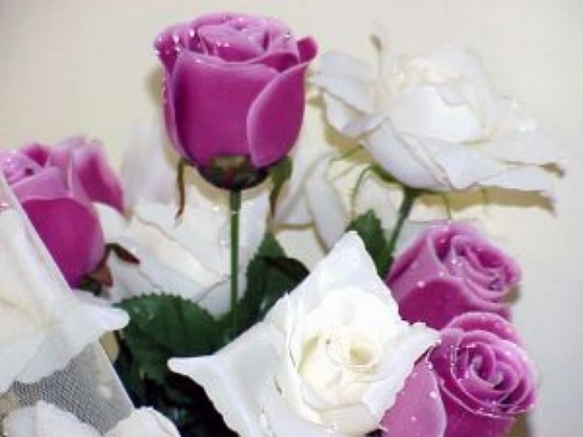 White and Purple Rose Bouquet