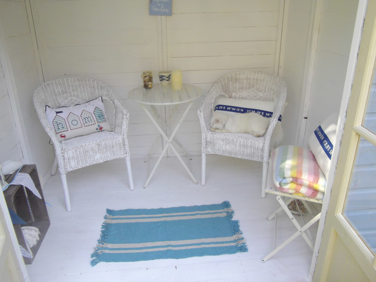 Interior of a beach hut themed garden shed/sumemrhouse. The cat is optional.