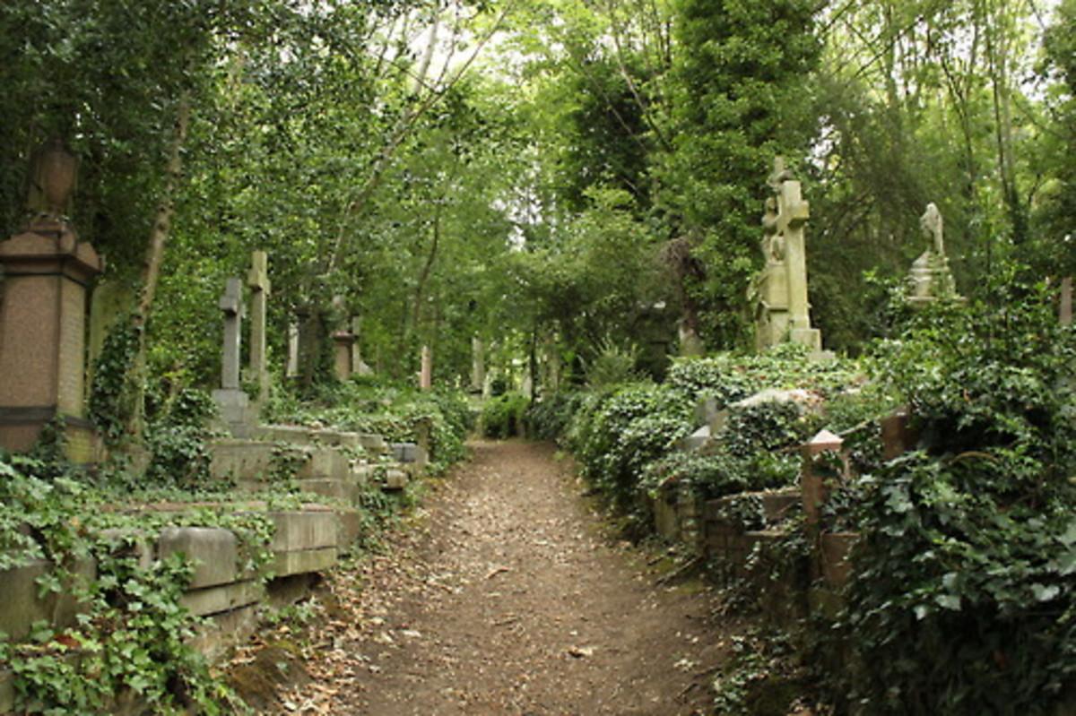 Highgate Cemetery Photo
