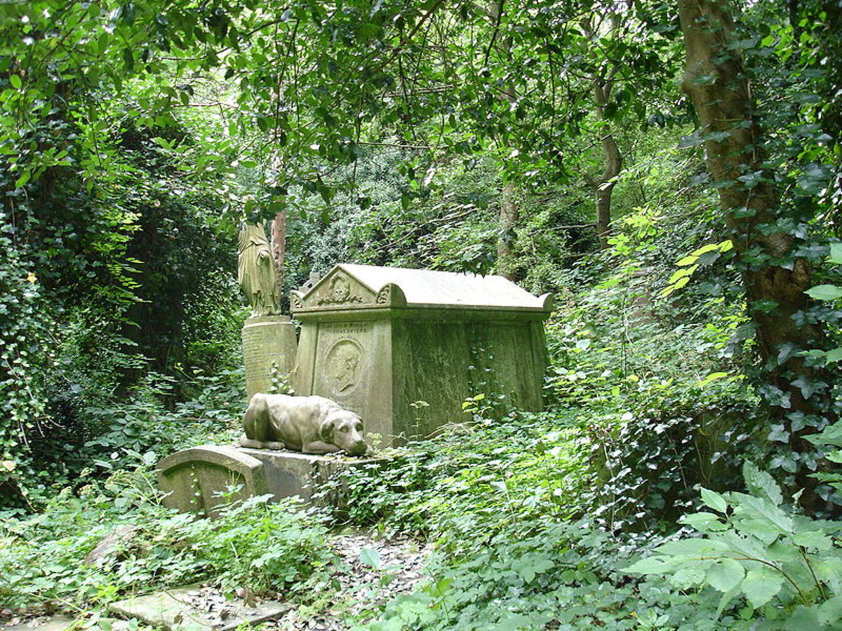 Highgate Cemetery is a cemetery located in Highgate, London, England. Does a very old vampire make its home in Highgate Cemetery?