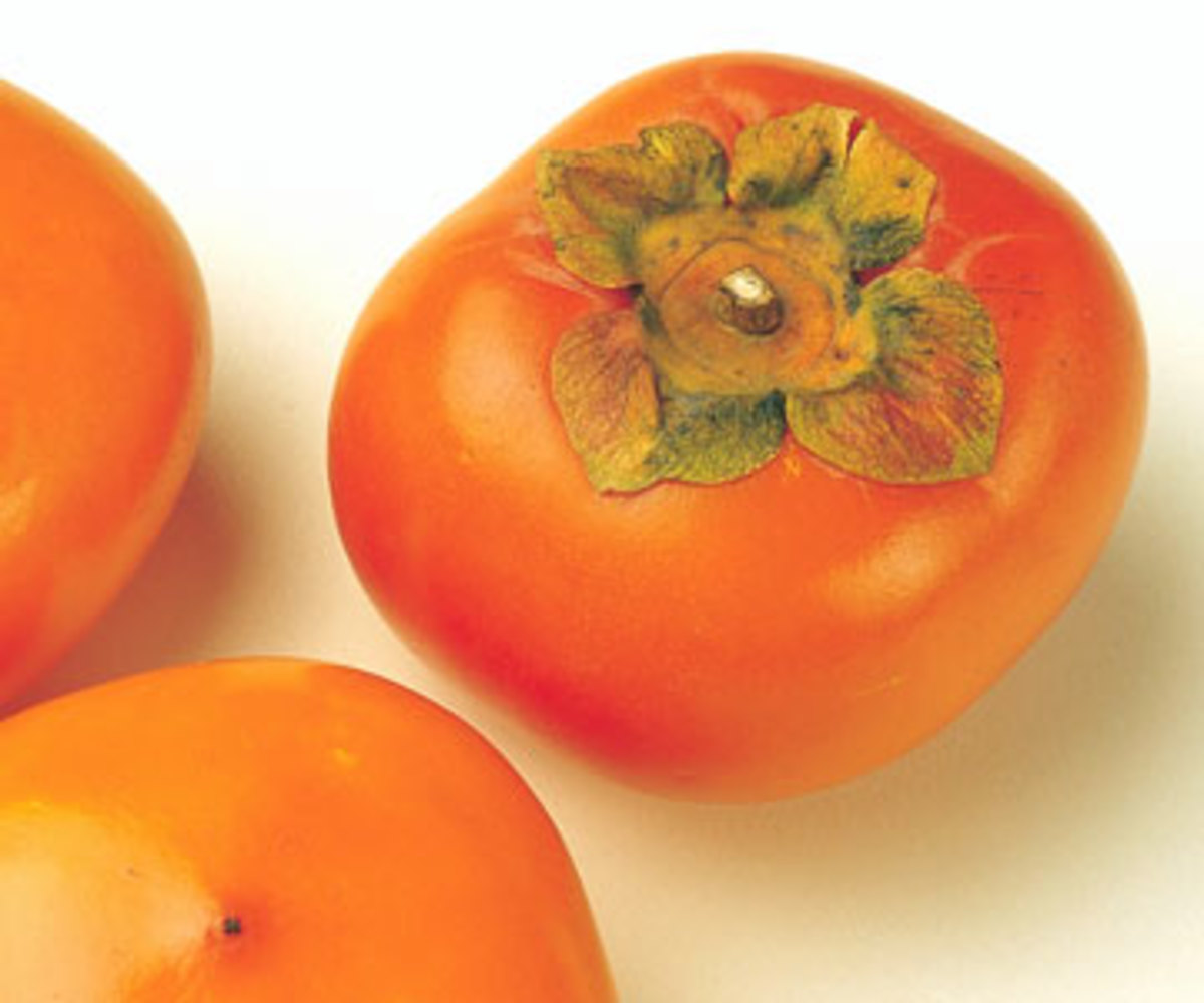 A ripe persimmon is bright to dark orange in color. Fuyus can be eaten when hard like an apple.