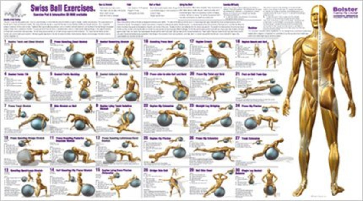 It is a graphic of Printable Exercise Ball Workouts in weight loss